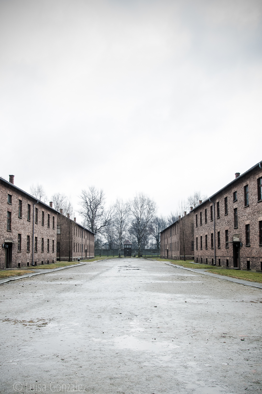 08-Auschwitz-LGGP-2015